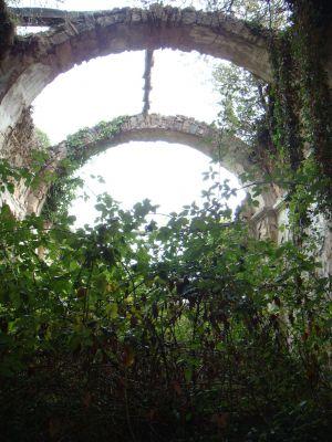 roa arquitectura y sostenibilidad patrimonio boatella